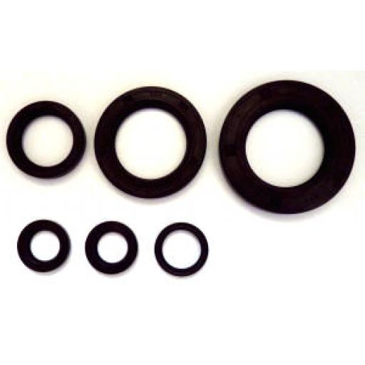 Oil Seal Kit for Triumph Unit 650cc Engines 1966 on - 99-9956